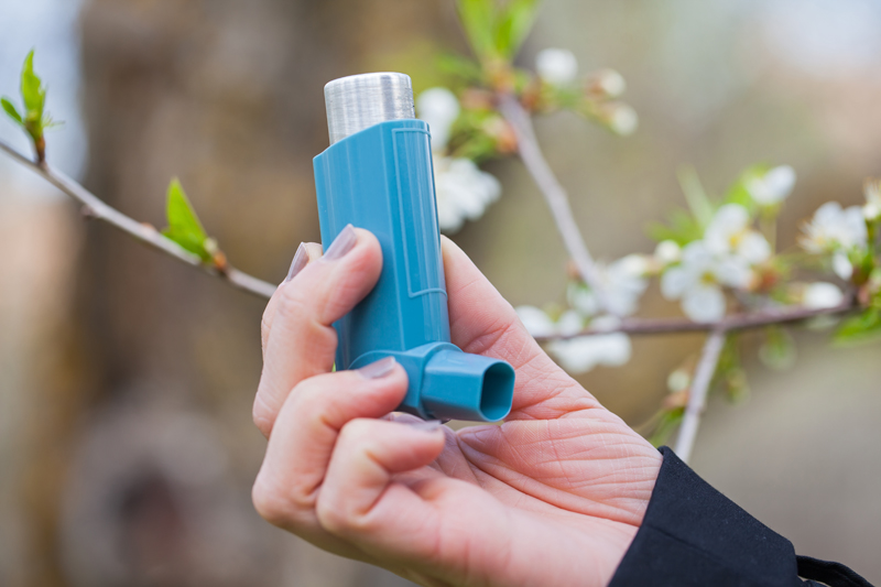Ayurvedic Remedies For Asthma - Activ Living