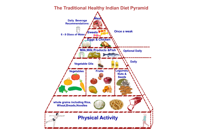 Understanding the Indian Food Pyramid - Activ Together