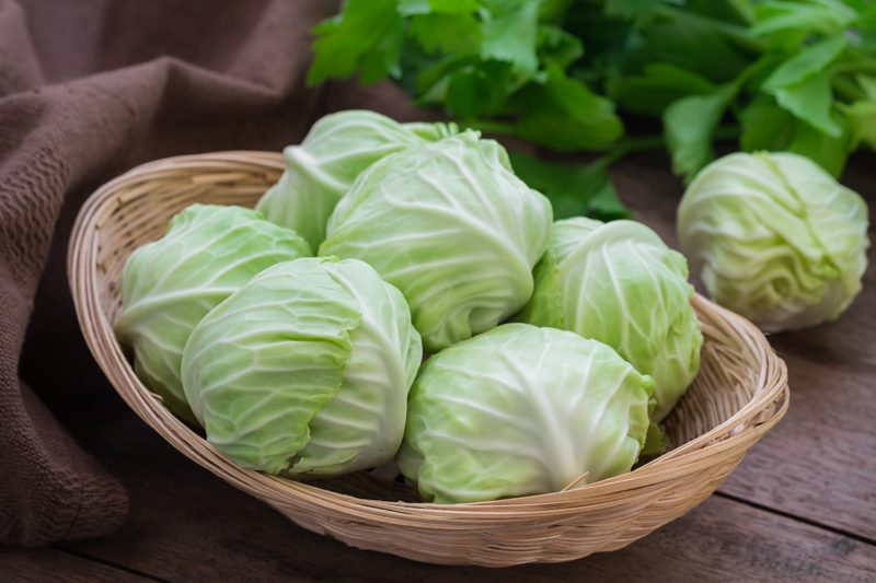 food-for-asthmatics-cabbage