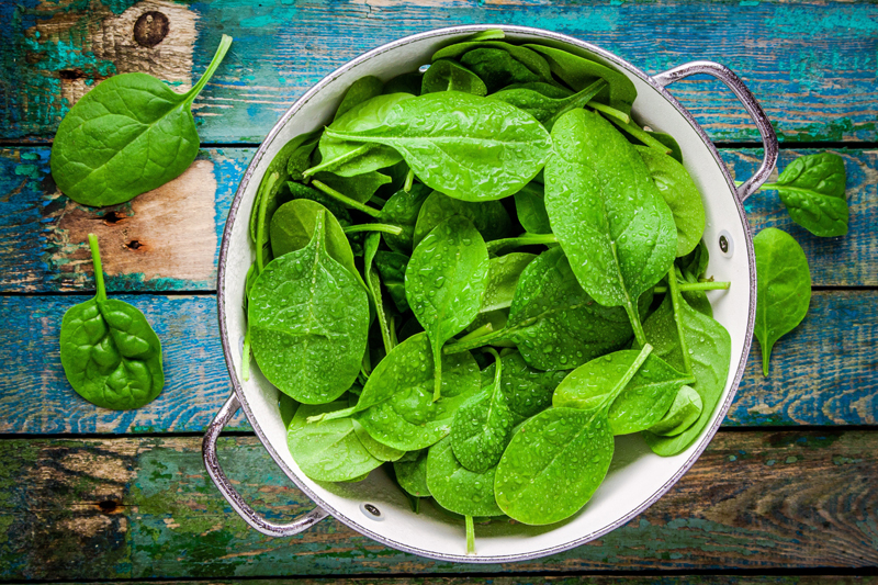 food-for-asthmatics-spinach