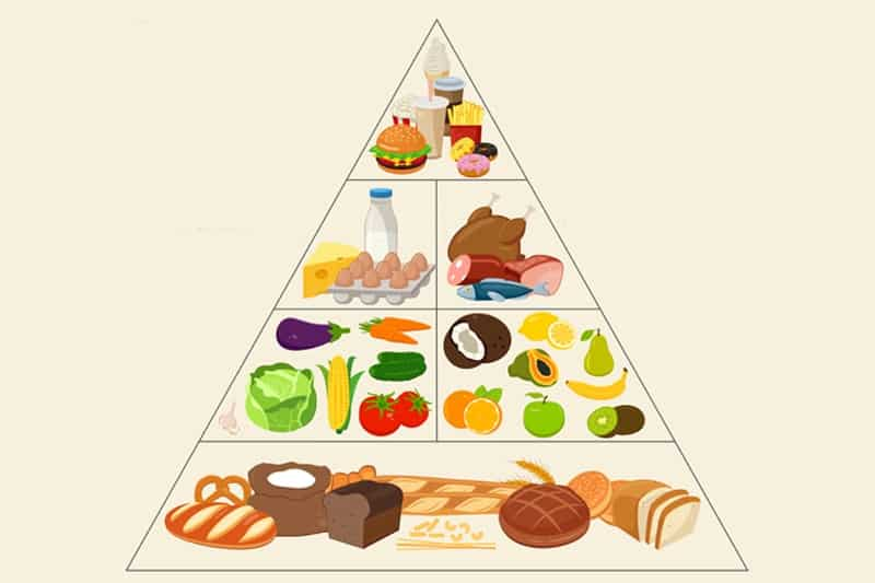 Food-Pyramid-header-2-abchi