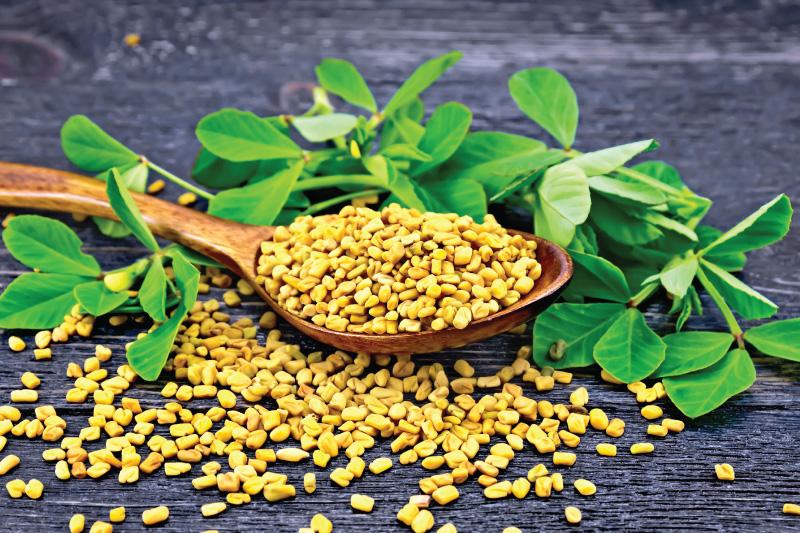 . Consume fenugreek seeds Activ Living