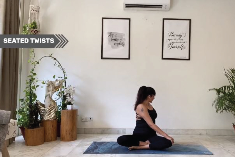 Seated Stretch- Activ Living