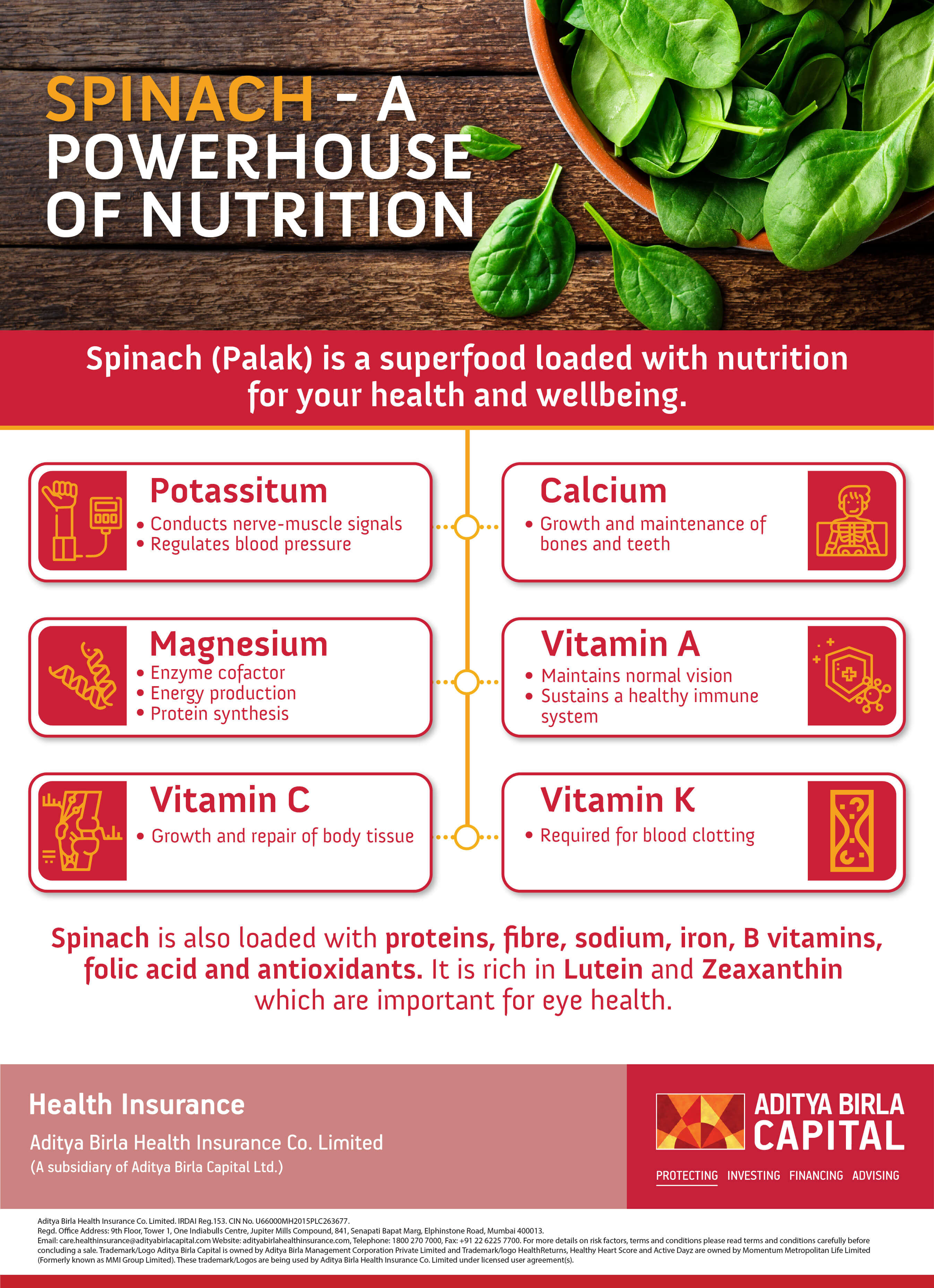 Spinach- Powerhouse of Nutrition Infographic- Activ Living