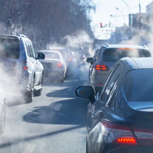 Effects of Air Pollution- Activ Living
