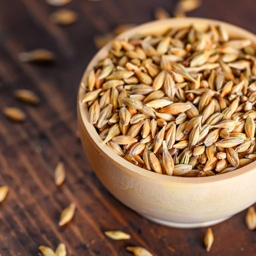 Health benefits of Barley- Activ Living